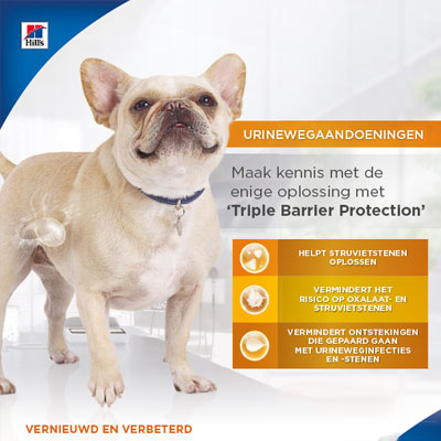 Canine – advertentie